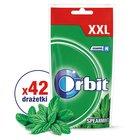 Orbit Spearmint XXL Guma do żucia bez cukru 58 g (42 drażetki) (1)