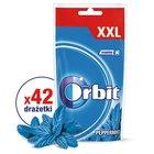 Orbit Peppermint Guma do żucia bez cukru 58 g (42 drażetki) (1)